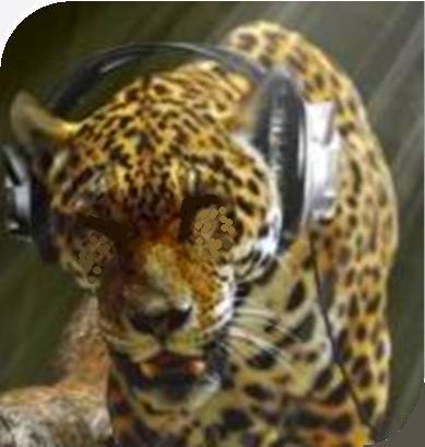 tiger with headphones